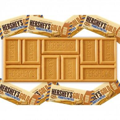 Hershey's Gold Peanuts & Pretzels Bar 2