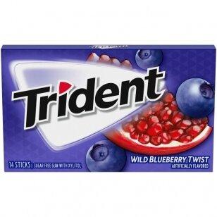 Kramtomoji guma TRIDENT Wild Blueberry