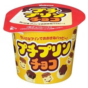 Petit Puding Choco 34g