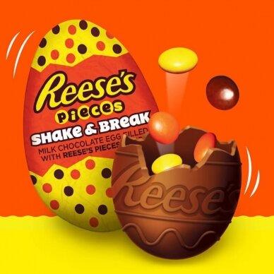 Šokoladinis kiaušinis REESE'S Shake&Brake 34g